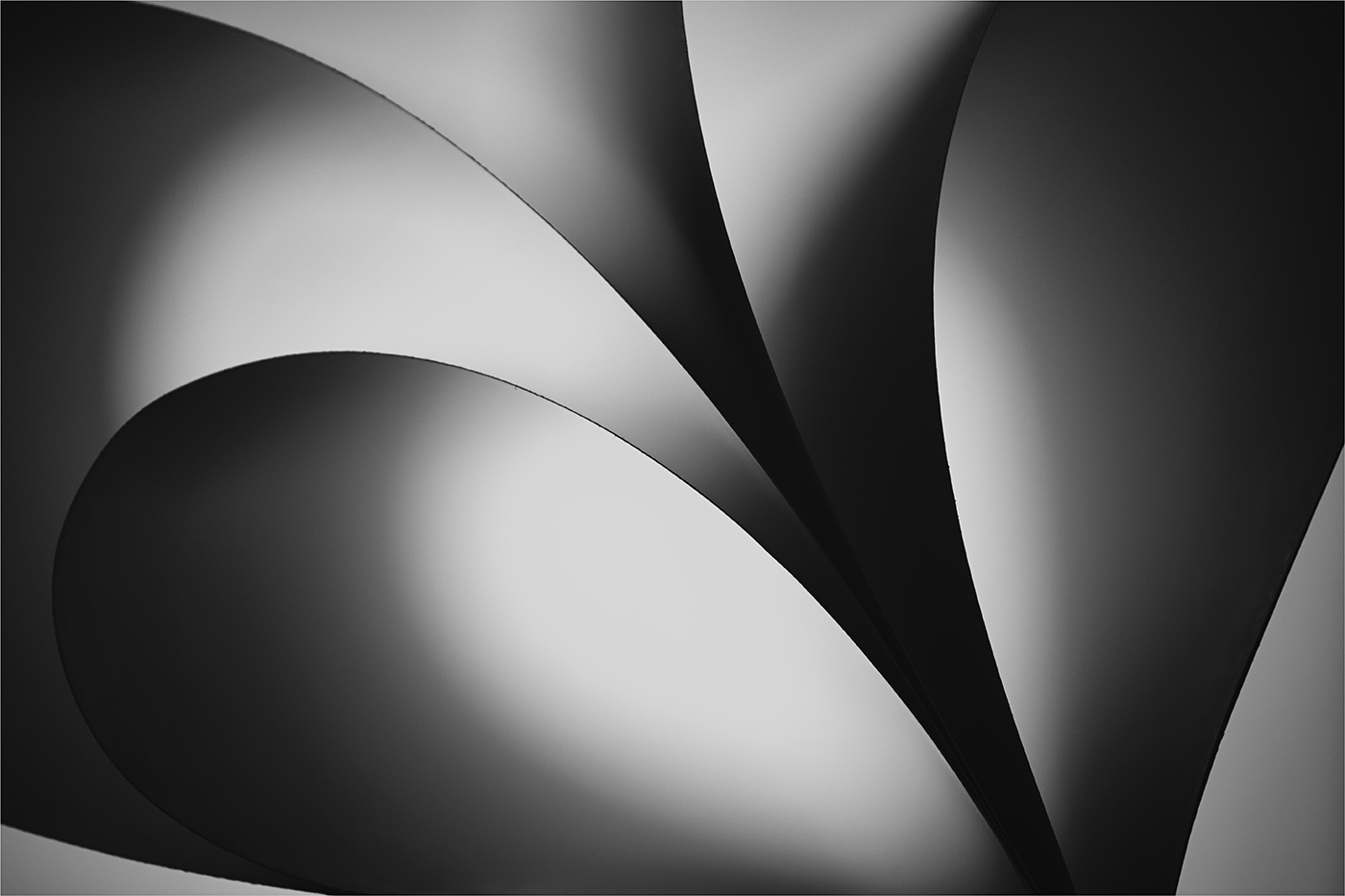Curves-by-Paul-Whitmarsh