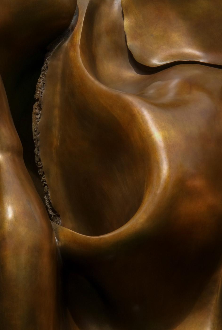 Copper Curves by Paul Lehane