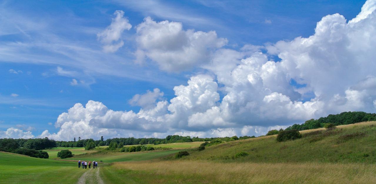 Cloudscape by Paul Lehane.jpg